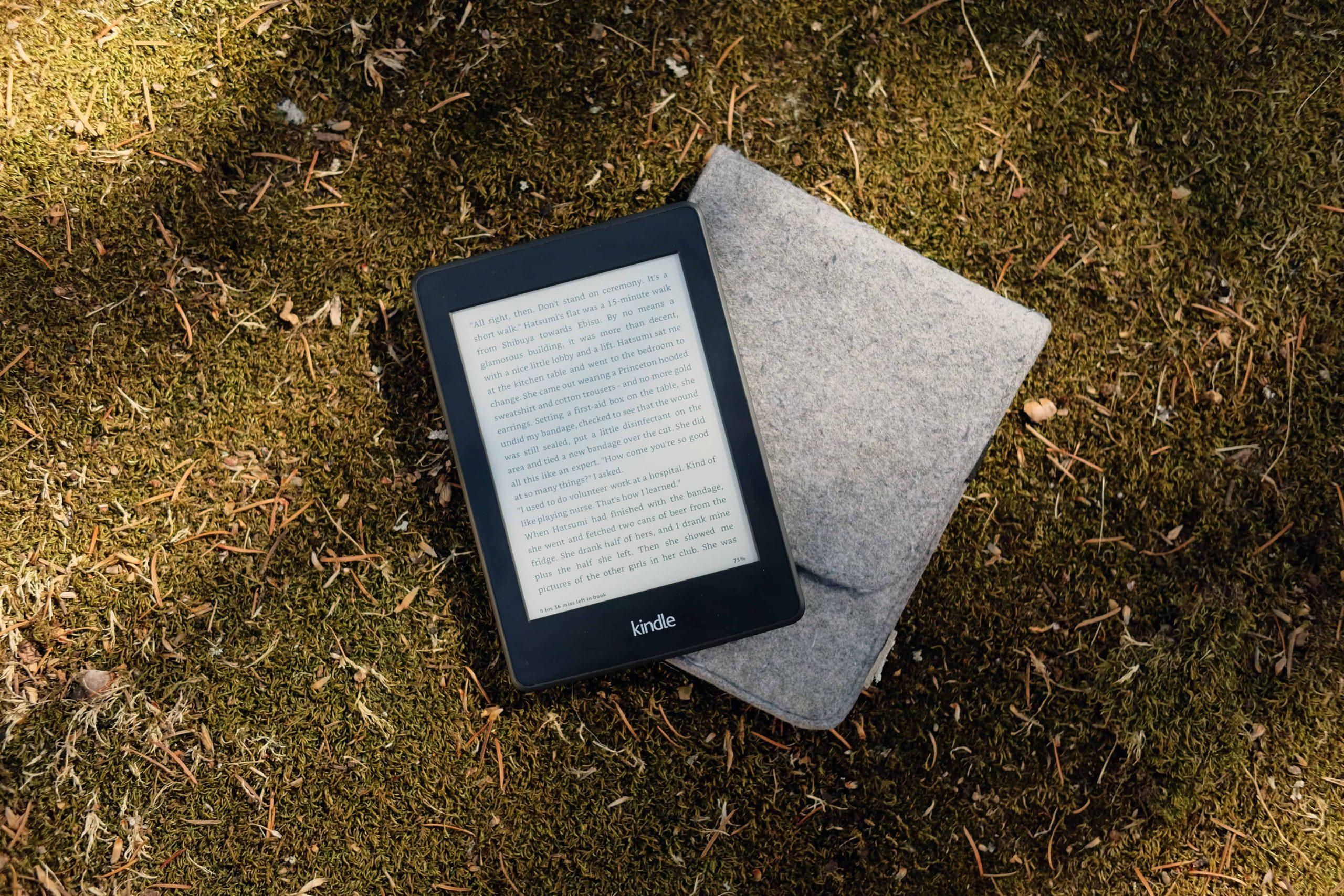 E-Book Reader Hülle: Test & Empfehlungen (08/20)
