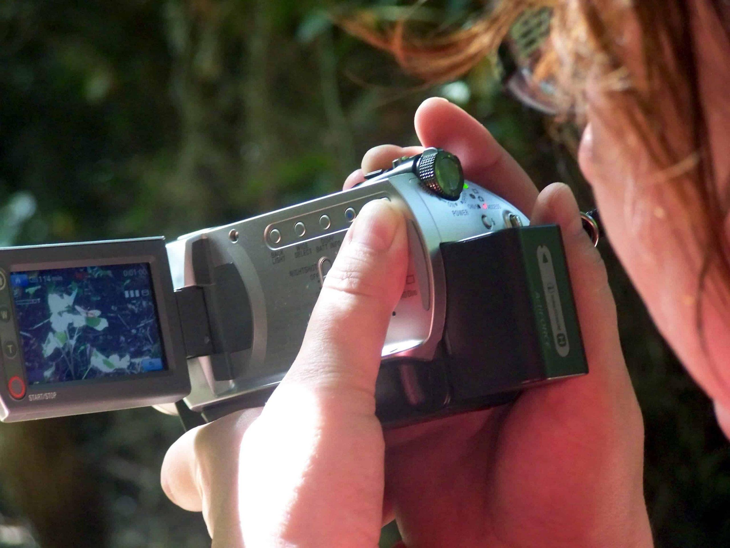Camcorder: Test & Empfehlungen (01/21)